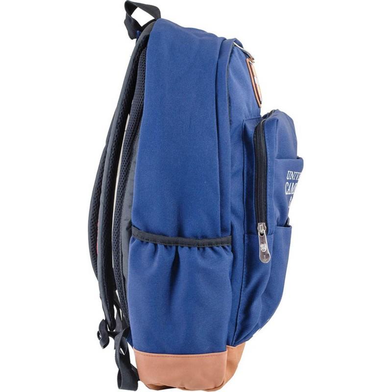 Рюкзак подростковый синий львов