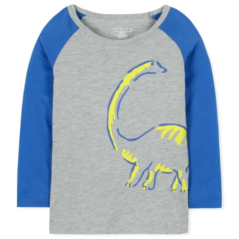 Лонгслив для мальчика Динозавр